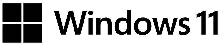The Windows 11 logo.