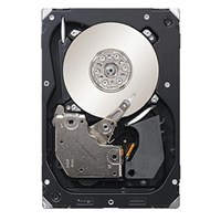 Seagate Cheetah 15K 450GB SAS 3.5 Hard Drive - 15000RPM, 16MB