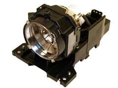 Infocus Replacement Projector Lamp