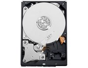 "WD AV-GP 500GB SATA II 3.5"" Hard Drive"