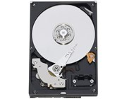 Western Digital Blue 320GB SATA III 3.5""