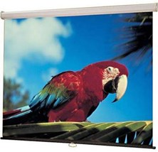 Draper Luma (92 inch) Manual Wall/Ceiling Projection Screen