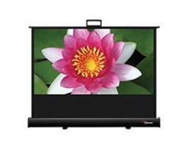 Optoma DP-9046MWL (46 inch) Pull Up Projector Screen