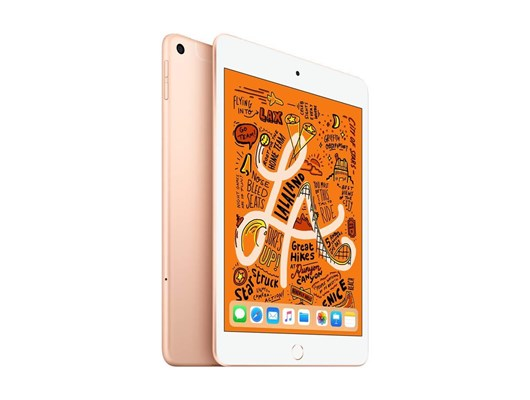 Apple iPad Mini 5 (7.9 inch) Tablet PC 256GB WiFi with Cellular iOS 12 (Gold)