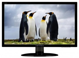 "Hanns-G HE225DPB 21.5"" Full HD LED Monitor"