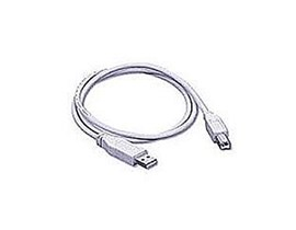 2m USB A to B Cable