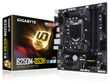 Gigabyte B250M-DS3H Intel Socket 1151 Motherboard