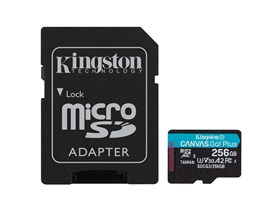Kingston Canvas Go! Plus 256GB UHS-1 (U3)